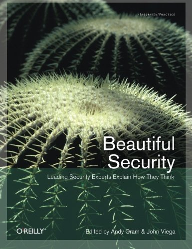 9780596527488: Beautiful Security: Leading Security Experts Explain How They Think
