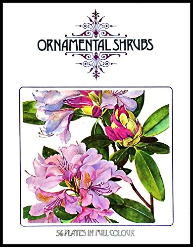 Ornamental Shrubs: Jaroslav Hofman