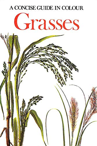 Grasses (Concise Guides in Colour): Sikula, Jaromir
