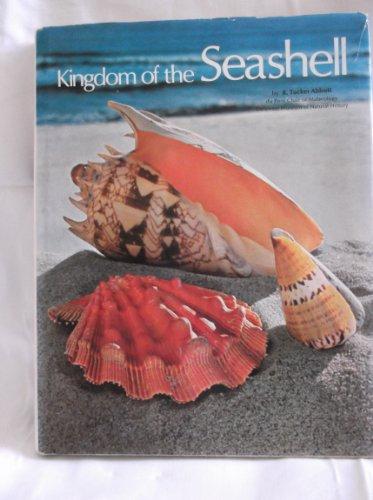 9780600353256: Kingdom of the Seashell
