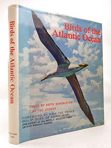 9780600430308: Birds of the Atlantic Ocean