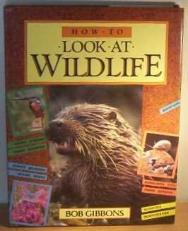 9780600556923: How to Look at Wildlife R