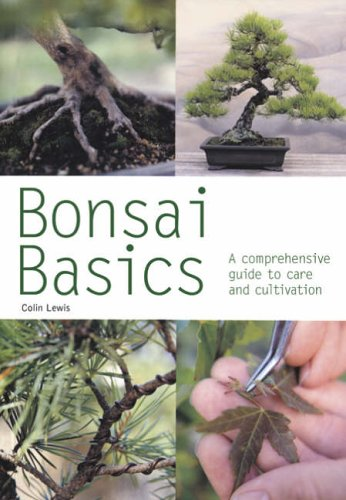 9780600612131: Bonsai Basics