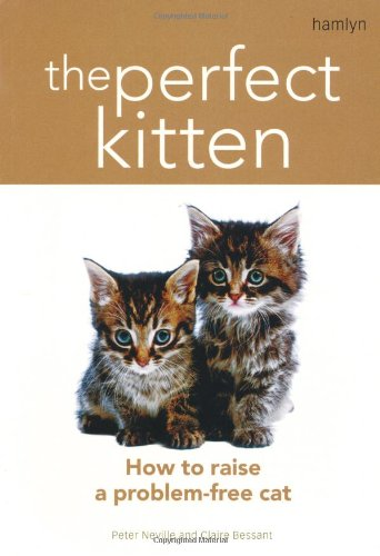 9780600613367: The Perfect Kitten: How to Raise a Problem-Free Cat