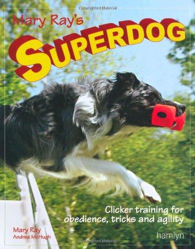 9780600617006: Mary Ray's Superdog