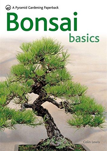 9780600619109: Bonsai Basics