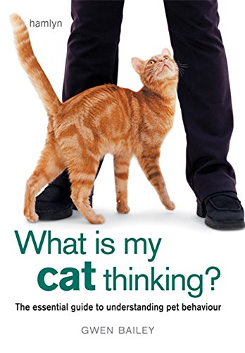 9780600619765: What is my Cat Thinking?: The essential guide to understanding your pet