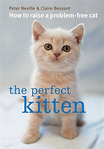 9780600623373: The Perfect Kitten. Peter Neville & Claire Bessant