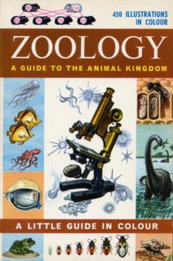 Zoology - An Introduction to the Animal Kingdom (U.K.) (Little Guides in Colour) (0601079981) by R.Will Burnett; Harvey L. Fisher; Herbert S. Zim
