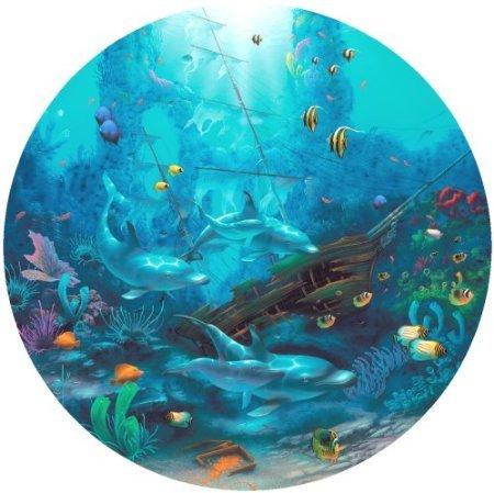 9780606215497: Dolphin Treasure
