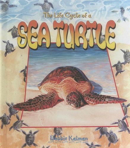 9780606240697: The Life Cycle of a Sea Turtle
