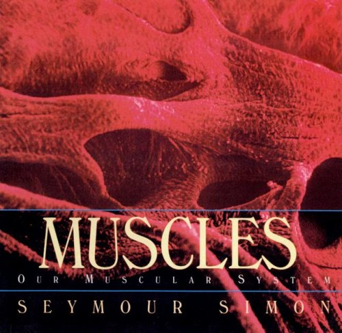 9780606247436: Muscles: Our Muscular System
