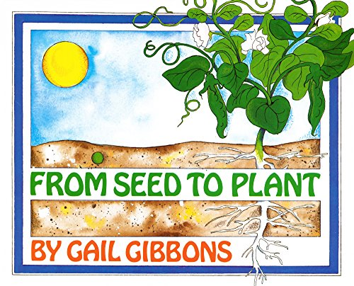 9780606265188: From Seed To Plant (Turtleback School & Library Binding Edition)