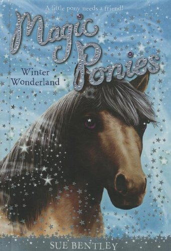 Winter Wonderland (Prebound): Sue Bentley