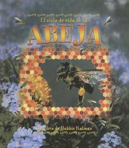 9780606335096: Ciclo De Vida De La Abeja/life Cycle of a Honeybee (Ciclo De Vida / the Life Cycle) (Spanish Edition)