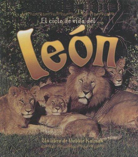 9780606335126: Ciclo De Vida Del Leon/life Cycle of a Lion (Ciclo De Vida / The Life Cycle)