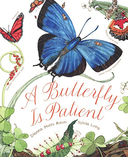 9780606369183: A Butterfly Is Patient (Turtleback School & Library Binding Edition)