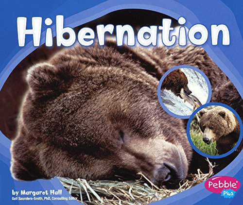 9780606373470: Hibernation (Turtleback School & Library Binding Edition) (Patterns in Nature)