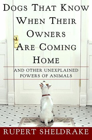 9780609600924: Dogs That Know When Their Owners Are Coming Home: And Other Unexplained Powers of Animals