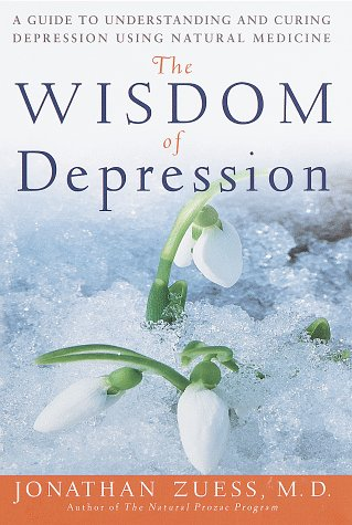 9780609601082: The Wisdom of Depression: A Guide to Understanding and Curing Depression Using Natural Medicine