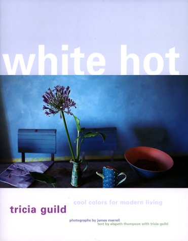 9780609604939: White Hot: Cool Colors for Modern Living