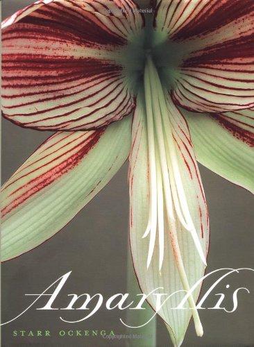 9780609608814: Amaryllis