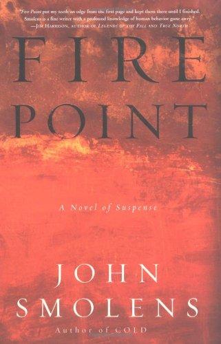 9780609611043: Fire Point: A Novel of Suspense