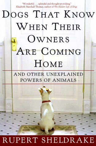 9780609805336: Dogs That Know When Their Owners Are Coming Home: And Other Unexplained Powers of Animals
