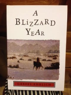 9780613625982: Blizzard Year: Timmy's Almanac of the Seasons