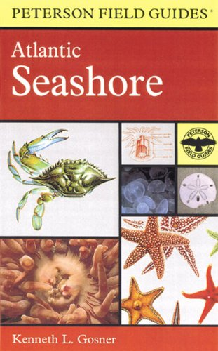 9780613915984: A Field Guide to the Atlantic Seashore: From the Bay of Fundy to Cape Hatteras (Peterson Field Guides)