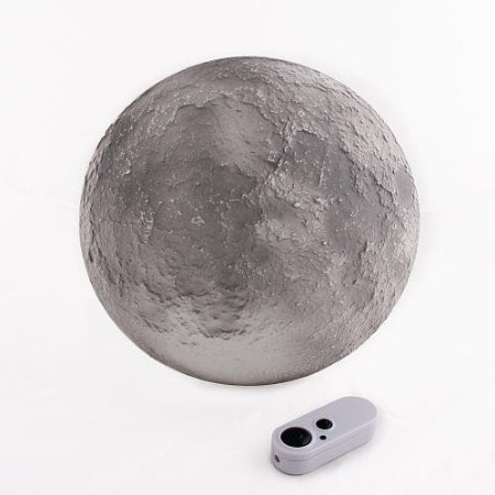 9780613992176: Moon in My Room