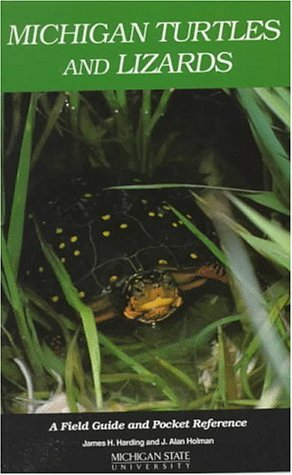 9780614069273: Michigan Turtles and Lizards: A Field Guide and Pocket Reference
