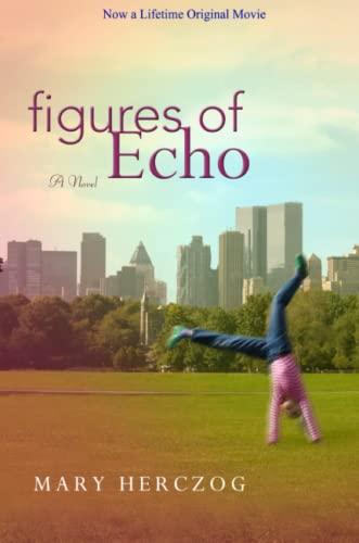 9780615150413: Figures of Echo