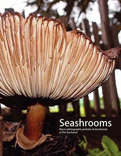 Seashrooms: Paul Foeckler