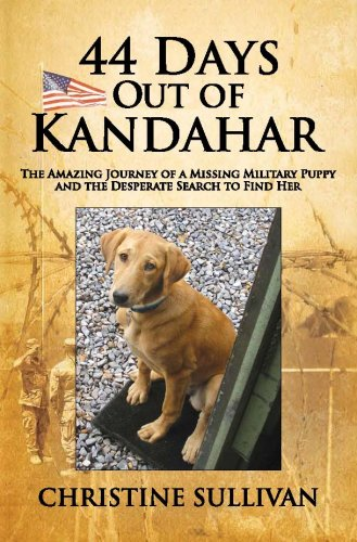 9780615195452: 44 Days Out of Kandahar: The Amazing Journey of a Missing Military Puppy and the Desperate Search to