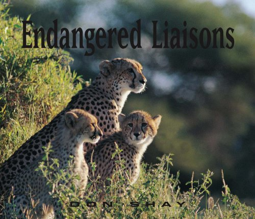 Endangered Liaisons: Don Shay