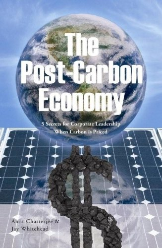 9780615298788: The Post-Carbon Economy