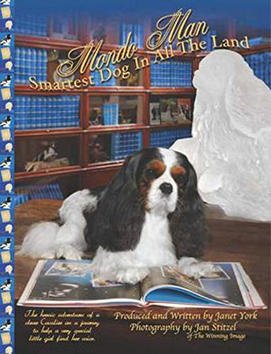 9780615309880: Mondo Man Smartest Dog in All the Land