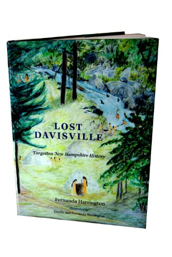 9780615371399: Lost Davisville; Forgotten New Hampshire History