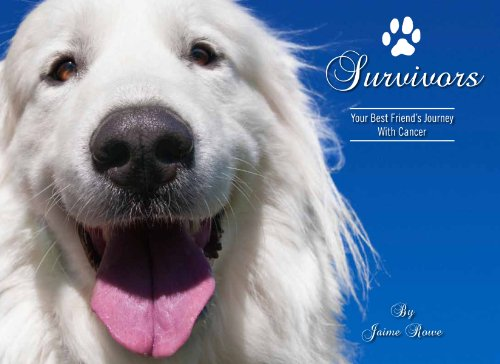 9780615392394: Survivors - Your Best Friend's Journey With Cancer