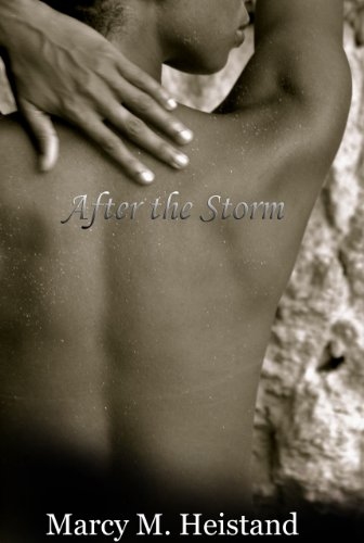 9780615405315: After the Storm