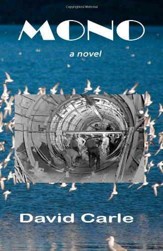 9780615411187: Mono: a novel
