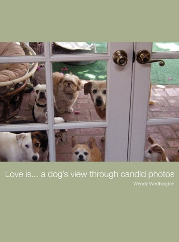Love Is.a Dogs View Through Candid Photos