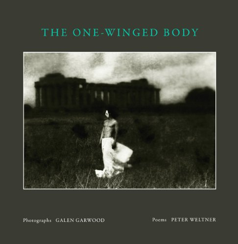 9780615467429: The One-Winged Body