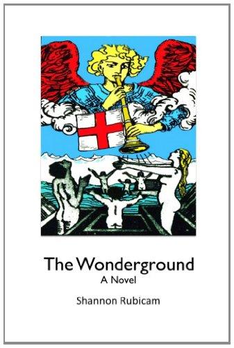 9780615490311: The Wonderground: A Novel