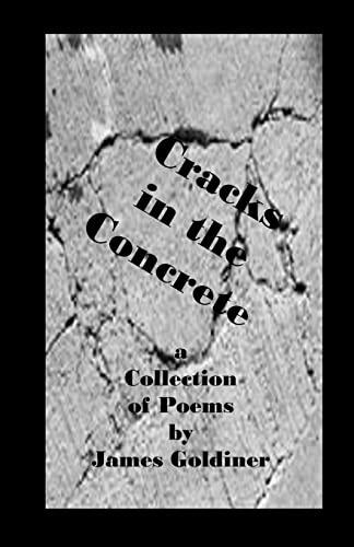 9780615514147: Cracks in the Concrete