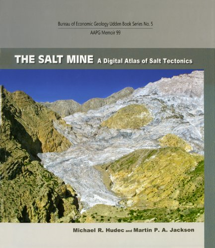 9780615518367: The Salt Mine (Aapg Memoir)
