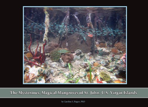 9780615547510: The Mysterious, Magical Mangroves of St. John, US Virgin Islands