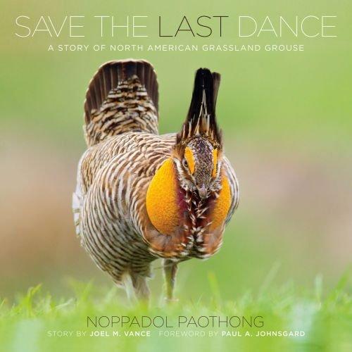 9780615617480: Noppadol Paothong Photography NPP617480 Save the Last Dance