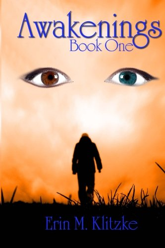9780615631035: Awakenings: Book One (Volume 1)